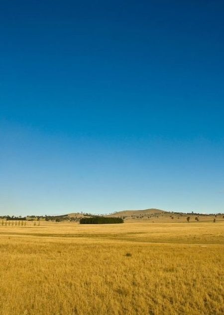 The view from 'Thunderbolt's Rock' in Uralla, New South Wales, Australia. New South Wales  Australia Countryside Rural Scenes OutLaw Yellow Blue Sky Yellow Grass