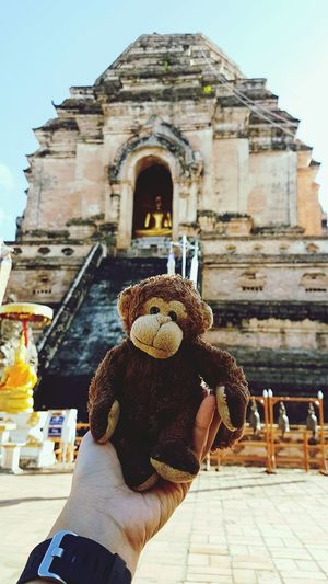 This is little Jamie, he has been my travel buddy since around 2010. I haven't been on a trip with him in the last 2 years and 2 weeks ago we went to Chiang Mai (the North of Thailand) together.Lieblingsteil Human Body Part Architecture Outdoors Old Ruin Human Hand Clear Sky Travel Destinations Close-up Building Exterior Sky City Thaistyle Hanging Out Enjoying Life