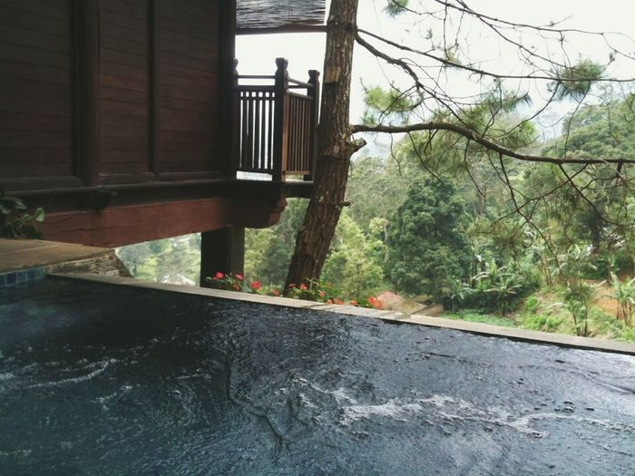 Ma nature jacuzzi👌 Relaxing Enjoying Life Hello World Indonesianature Check This Out Indonesianisland Travelling Westjavaindonesia Nature Travel Photography Resort Puncak Bogor Natural Beauty Stunning