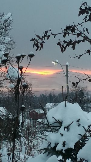 Winter in Norway 😊 Hanging Out Check This Out Taking Photos Hi! Enjoying Life Sunrise Home Sweet Home Cold Morning Winter Norway Hello World Skyporn Cold Winter ❄⛄ Norwegian Winter Riseandshine Cold Temperature January 2016 Snowday