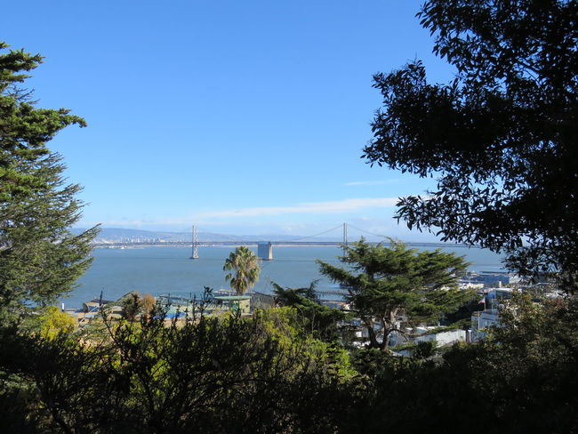Bay Area Beauty In Nature Blue Connection Distant Green Color Growth Lush Foliage Oakland Bay Bridge Remote San Francisco Sky Tranquil Scene Water