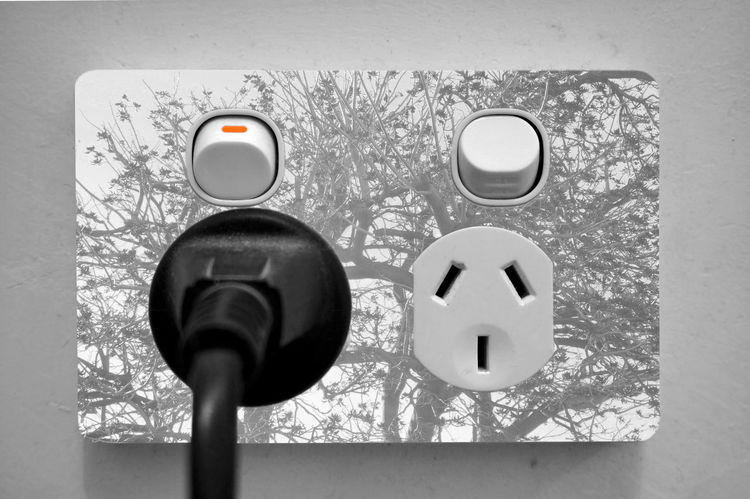 Close-up Double Double Exposure Doubleexposure Edited Electric Electricity  Exposure Indoor Indoor Photography IndoorPhotography Indoors  Inside Man Made Object Nature Nature Photography Nature_collection Plate Plug Plugs Power Power In Nature Socket Trees Two