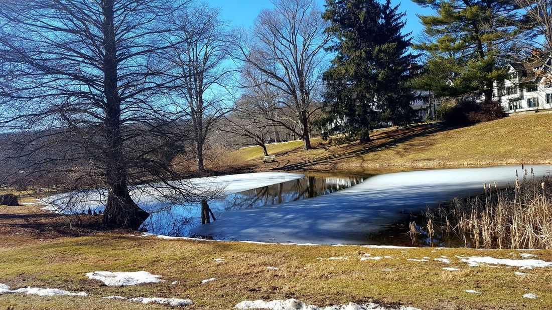 Ice water Snow Reflection Tree Sky Tranquility Lake Scenics Beauty In Nature Nature House Ringwood State Park Winter