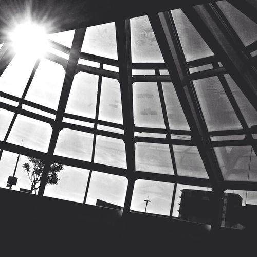 Enjoying The Sun Sky Blackandwhite Sun_collection
