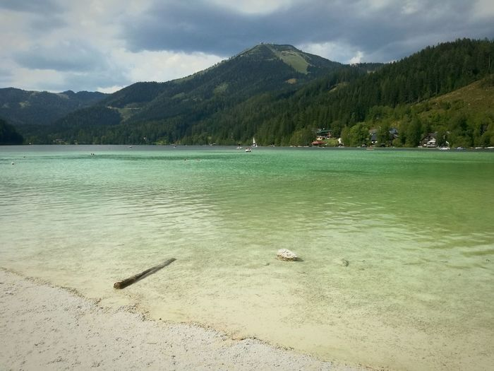 Erlaufsee Austria Travel Destinations Lakeview Nature_collection Cristal Clear Mountain Range Hikingphotography Traveladdict TravelAustria Eyem Best Shots Placetobe Waterfront Travel Photography Tree Bird Water Mountain Lake Forest Sky Landscape Cloud - Sky