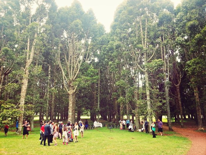 Nature Attending A Wedding At The Park jaime and pauls big day ♥