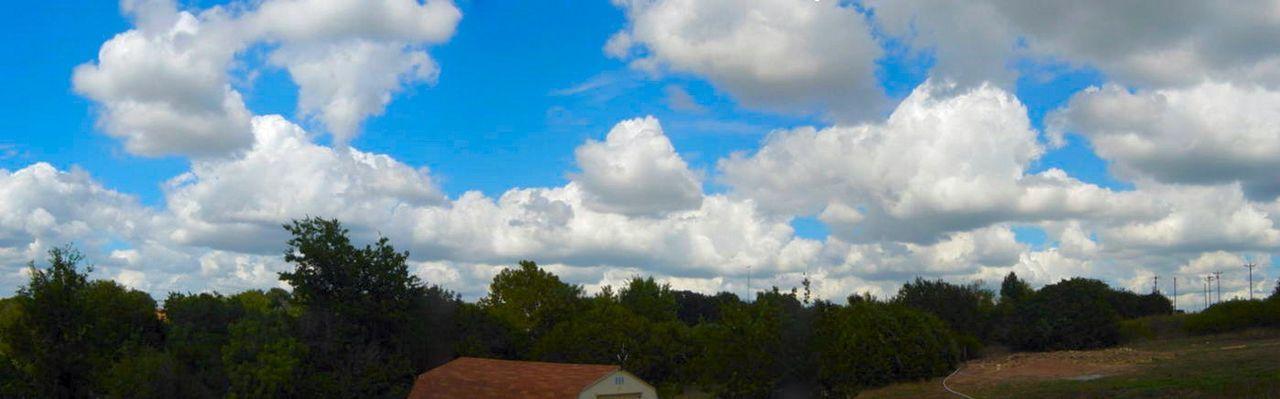 cloud - sky, sky, nature, tree, day, outdoors, blue, no people, scenics