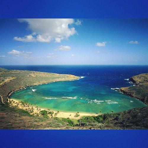 Lovely weather at Hanaumabay Snorklinggearout Hawaiilife 808  bluesky bluewater snorkling oahu luckywelivehawaii lovingwhatido goodtimes happylifey