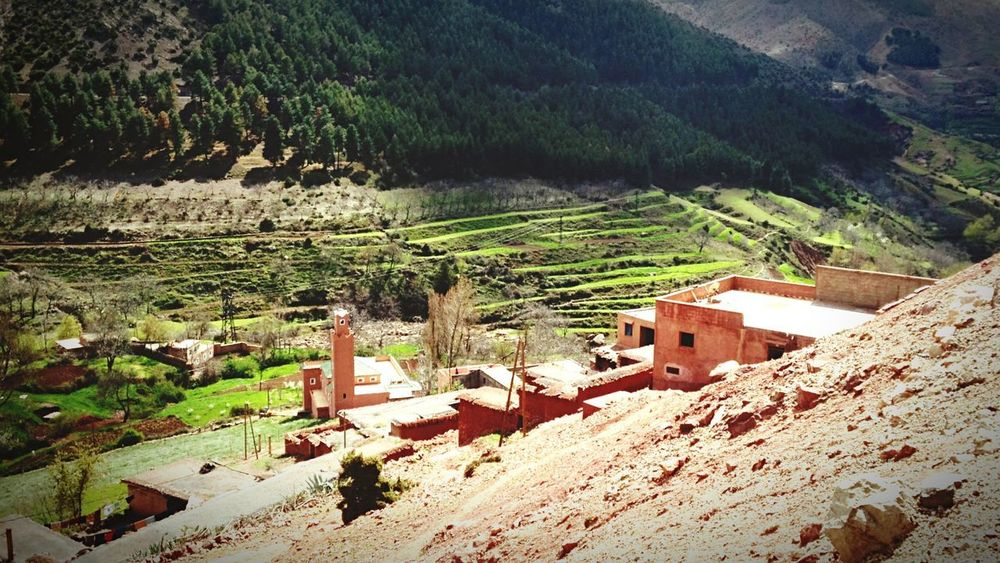 Beauty In Nature Berber  Men Mountain Atlas Morocco Plant Day Nature Sunlight Landscape Tree Land Beauty In Nature Environment Mountain Outdoors
