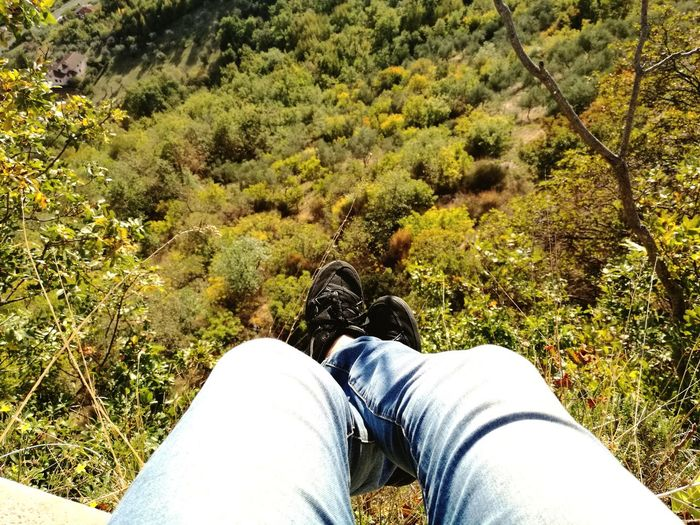 Low Section Human Leg Personal Perspective One Person Shoe Real People Human Body Part Jeans Lifestyles Day Leisure Activity High Angle View Nature Outdoors Men Standing Tree Adult People