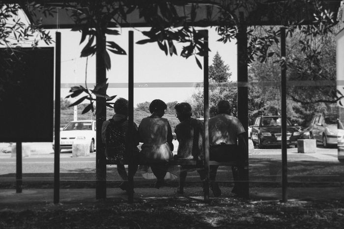Gossip girls Bench Black And White Blackandwhite Bus Bus Stop Cars Conversation Day EyeEm Black&white! Frame Gossip Leaves Men Outdoors Parking People Portugal Rear View Road Sitting Talking Tree Waiting Window Women