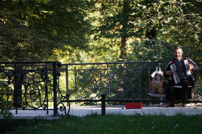 Impression from the English Garden in Munich Musician Musiker Straßenmusiker Streetmusician Park In The Park Bridge