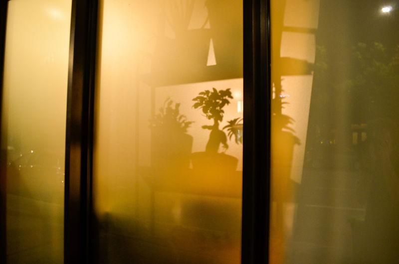 Curtain Window Door Domestic Room Close-up Window Frame Transparent Window Sill Looking Through Window