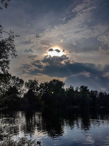 Beauty In Nature Cloud - Sky Growth Lake Nature No People Non-urban Scene Outdoors Plant Reflection Reflection Lake Scenics - Nature Silhouette Sky Sunset Tranquil Scene Tranquility Tree Water Waterfront