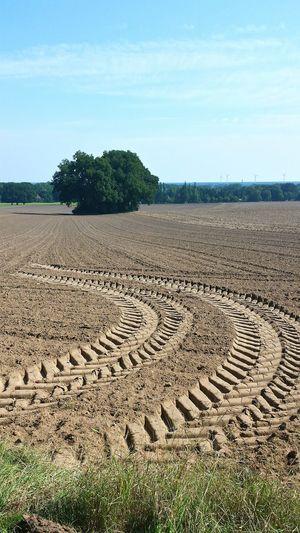 Wedemark Acker Field Soil Mutterboden Brelinger Berg Germany Landmaschinenspur Deceptively Simple