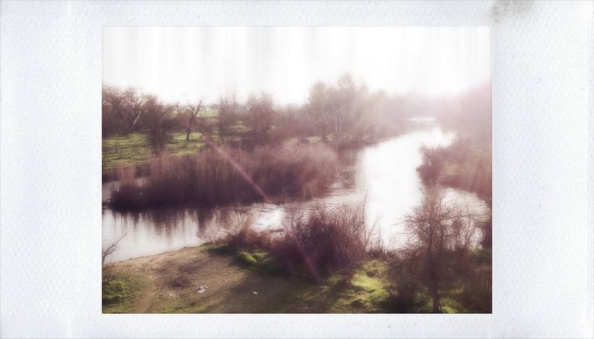 Those kind of memories which are like a bridge, the water goes by but they stay for ever. IPhoneography Polaroid Polamatic Merced River California TeamWeirdoForever Withmylove