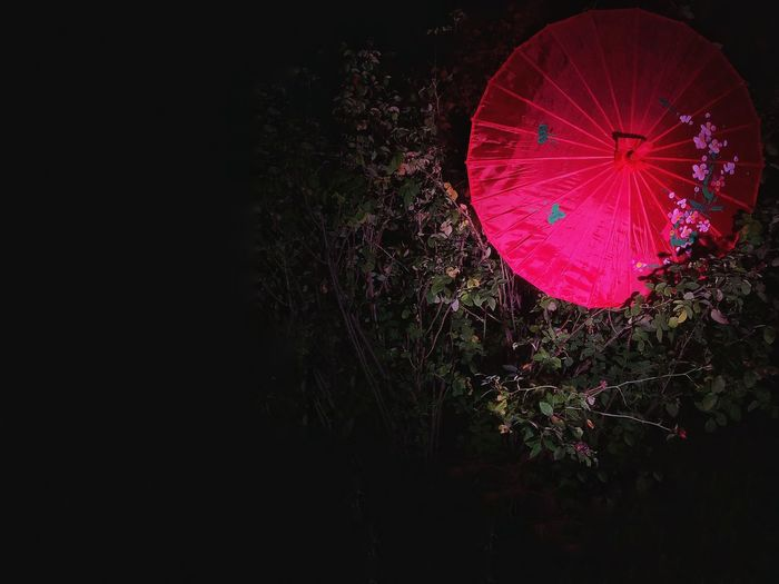 Umbrella No People Copy Space Red Multi Colored Illuminated HUAWEI Photo Award: After Dark Lighting Equipment Decoration Night Low Angle View Nature Plant Pink Color Dark Tree Hanging