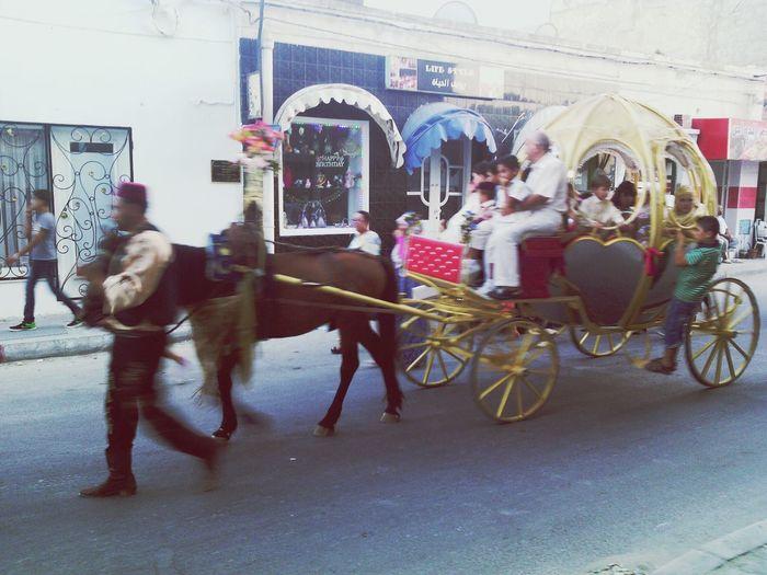 Traditionel Mahdia/Tunisia Coulisse