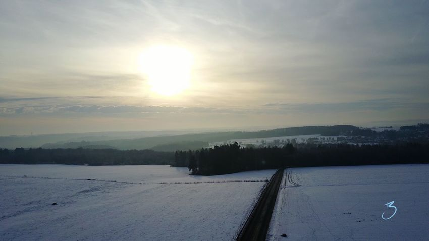 Winter Snow Cold Temperature Nature Weather Beauty In Nature Scenics Sky Tranquil Scene Tree Tranquility Landscape Frozen Field Outdoors No People Sun Day Müllerthal Müllertal,Luxemburg Mullerthal Trail Luxembourg DJI Mavic Pro Beaufort  Beauty In Nature