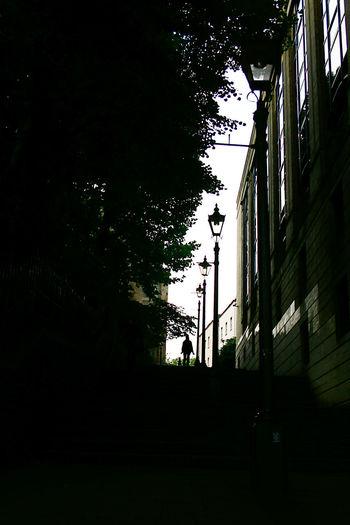 Silhouette of city street