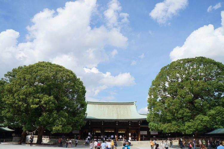 메이지신궁 도쿄 여행 Meiji-Jingu Tokyo Travel