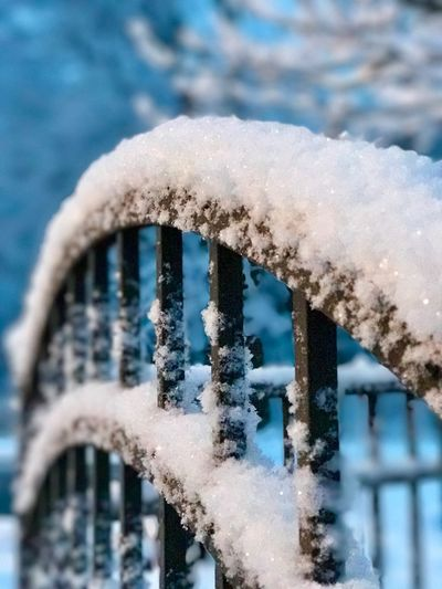 Snow Covered Gate In My Backyard Eyem Nature Lovers  Snowing Nature Snow Winter Cold Temperature Day Close-up Focus On Foreground Outdoors No People Nature