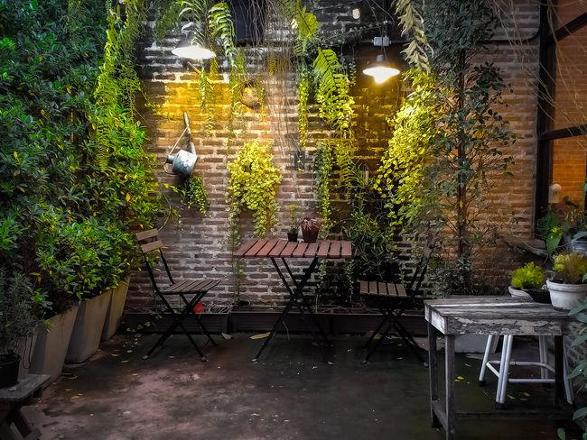 มุมหนึ่งที่สบายตา ศิลปะ Coffie สวน สบาย มุมนั่งเล่น ร้านกาแฟ ร้านอาหาร สวนหย่อม วินเทจ Tree