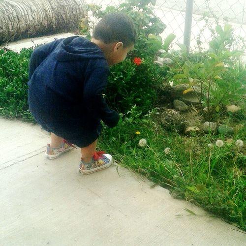 My Baby Atrapandomariposas Mom Taking Photos Enjoyingthegreenlife💚 en Playas De Tijuana