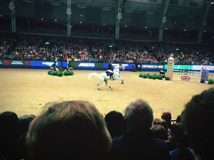 Competition Sport Horse Horse Riding Olympia