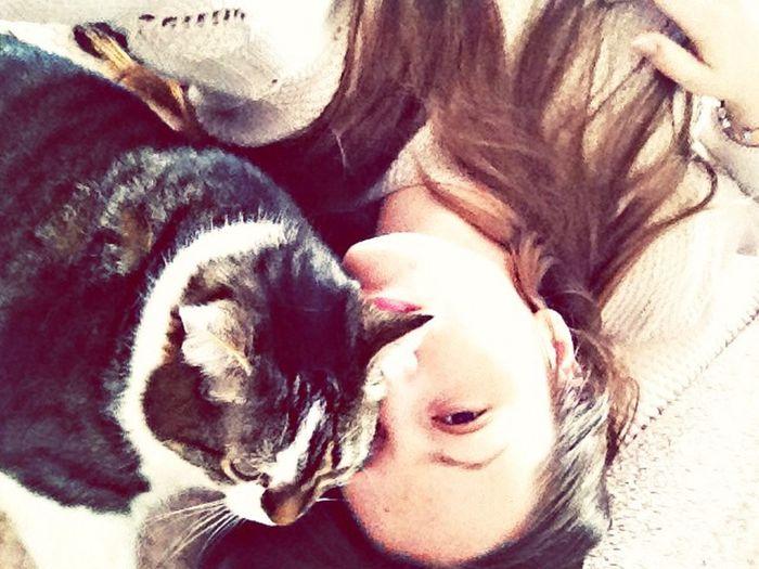 ?❤️? Love ♥ Cat First Eyeem Photo