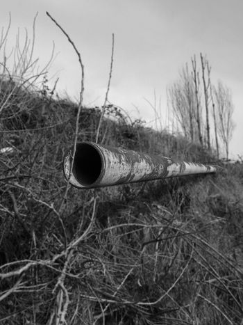 Portland, OR EyeEm Exploring Black And White Abandoned Abandoned Places Lookout Rust Rustygoodness 3-D