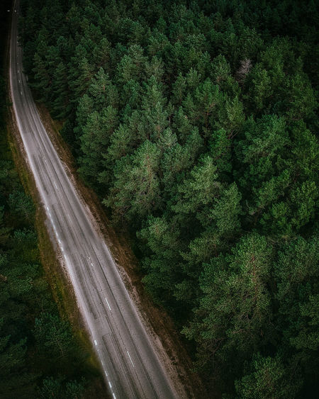 Aerial Shot Drone  Lithuania Lithuania Nature Nature Nature Photography Wanderlust Adventure Aerial View Blurred Motion Day Dronephotography Forest Green Color Motion Mystery Nature Nature_collection Naturelovers Outdoors Plant Road Scenics - Nature Transportation Tree The Great Outdoors - 2018 EyeEm Awards