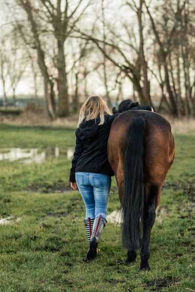 Girl with Horse, walking away Walking Away Animal Themes Domestic Animals Field Friend Friendship Full Length Golden Hour Grass Holsteiner Horse Horse Photography  Leisure Activity Mammal Nature One Animal One Person Outdoors Pets Real People Rear View Trust Walking Hand In Hand