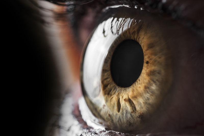60mm EyeEmNewHere Venus Close-up D750 Detail Eyelash Eyes Eyesight Human Body Part Human Eye Human Eyes Iris - Eye Macro One Person People Sensory Perception