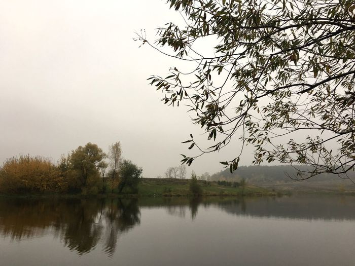 Water Tree Lake Reflection Tourism Russia Beauty In Nature Nature Waterfront Sky Day No People