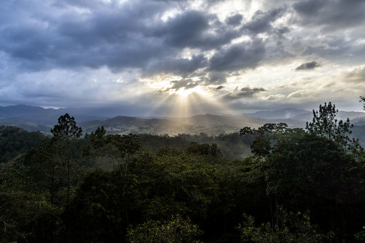 Dark mood as sunsets over forest and mountains in Jarabacoa, Dominican Republic Beauty In Nature Caribbean Cloud - Sky Day Dominican Republic Forest Growth HDR Jarabacoa Landscape Mood Mountain Nature No People Outdoors Rain Forest Scenics Sky Sunset Tranquil Scene Tranquility Tree View