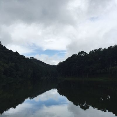 The reflection Tree Sky Cloud Blue Park Lake Pond Landscape Nature Outdoors Environment Countryside Scenic Water River Reservoir Reflection Echo Tranquil Quiescent Thailand Wlodsimier