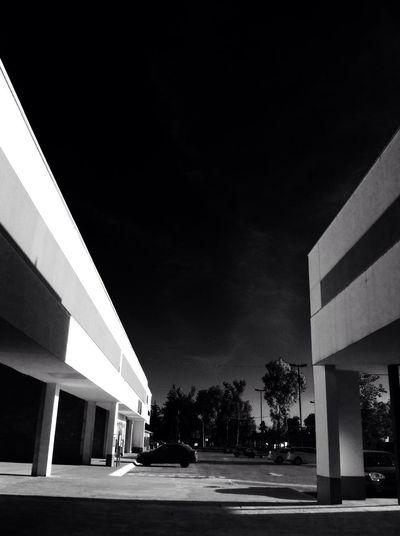 AMPt_community NEM Landscapes NEM Black&white  Monocrome