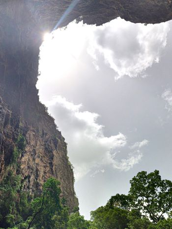 Cloud - Sky Sky Tree Low Angle View Plant Nature Day Sunlight Growth Scenics - Nature Tranquil Scene No People Mountain Outdoors Rock Non-urban Scene Idyllic Tranquility Land Beauty In Nature