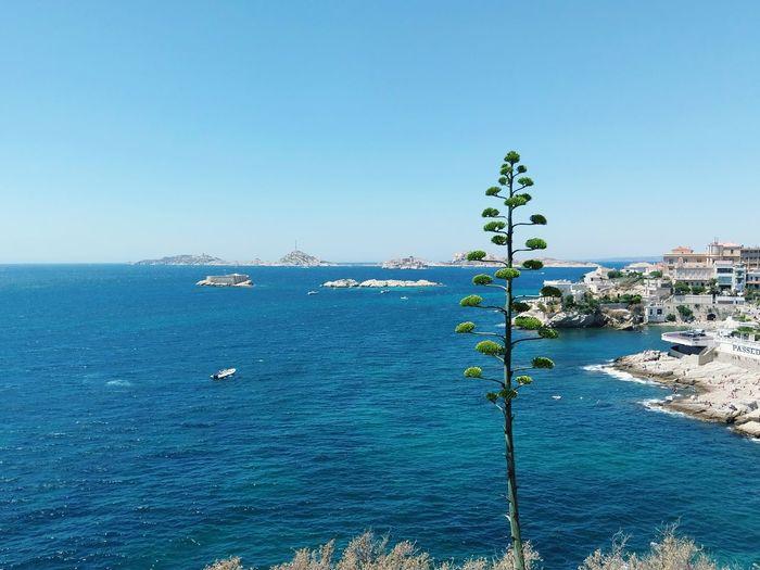 EyeEm Selects Mediterranean Sea France Mer Mediterranée EyEmNewHere Perfectnature Nature Marseille France