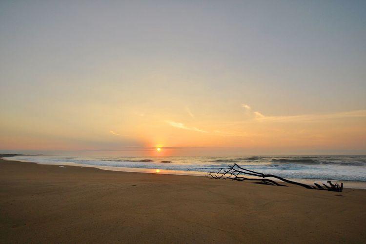 Sea Beach Horizon Over Water sunrise sScenicssSandbBeauty In NaturenNaturesShoretTranquilitytTranquil ScenesSkyoOutdoorsnNo PeoplewWavedDay