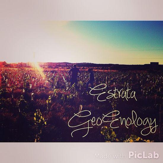 EstrataGeoEnology WinesOfChile Viños asesorando por Cauquenes :)