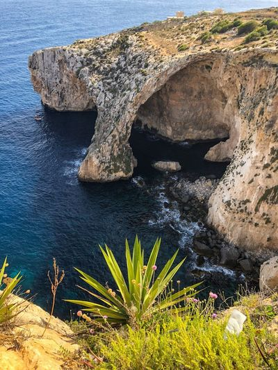 Bay Mediterranean  Travel Destinations Travel Photography EyeEm Nature Lover EyeEm Best Shots Sea Rock Formation Malta Water Plant Nature Sea Beauty In Nature Growth No People Rock