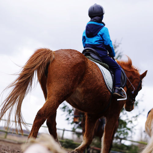 Kid on a horse