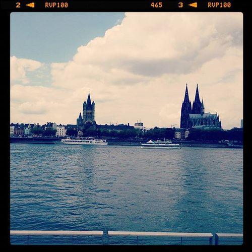 Cologne 💞 Koelnamrhein Cologne Germany Liebedeinestadt Filterused Rheinpromenade Rheinboulevard Köln Sommer Dom Rheinstagram Koelnergram