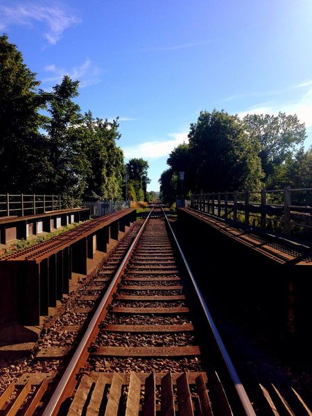 'Even if you're on the right track you'll get run over if you just sit there' Train Tracks Tracks Hanging Out Mobilephotography Mothernature Tree_collection  Oneway Onedirection Onefineday Enjoying Life Summertime Summer ☀ Sunshine OnOurWay Stopforlunch Bluesky