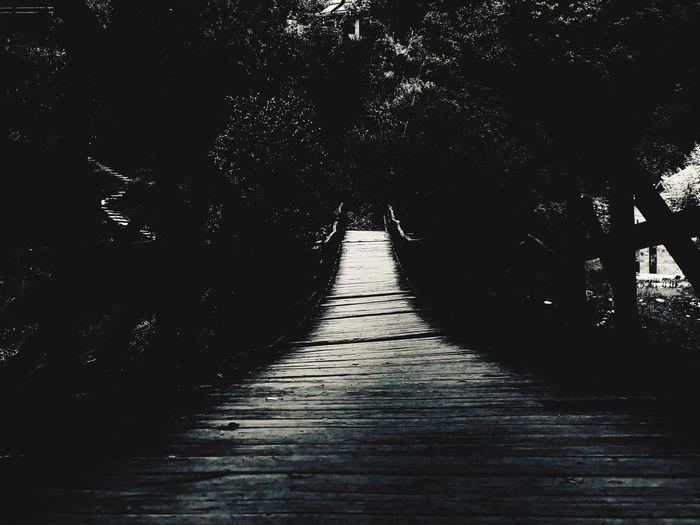 Empty footpath along trees in park