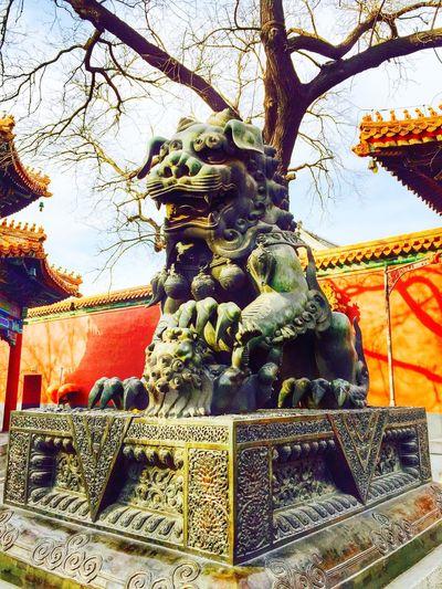 IPhone6 Plus Beijing Lama Temple