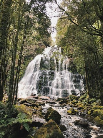 Nelson Falls Waterfall Scenics Nature Beauty In Nature Rock - Object