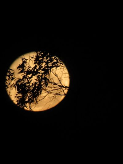 Súper Moon Copy